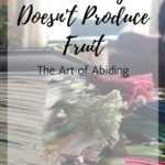 When Busy Doesn't Produce Fruit | The Art of Abiding